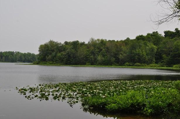 Acreage - Paw Paw, MI (photo 4)