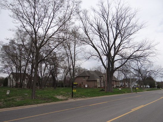 Detached Single - Naperville, IL (photo 3)
