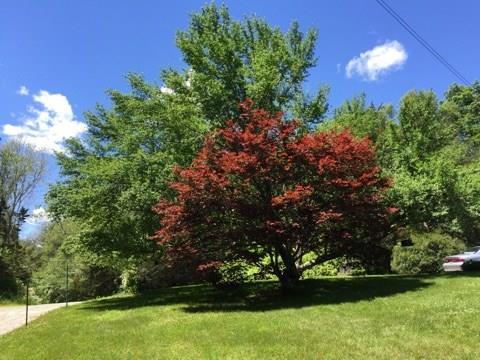 72 D Stillman, North Stonington, CT - USA (photo 4)