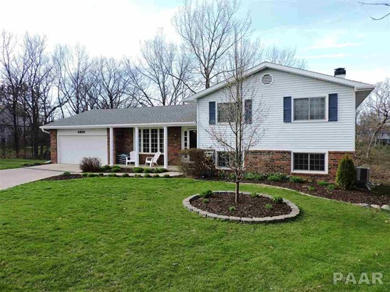 Single Family, Quad-Level/4-Level - Mapleton, IL (photo 1)