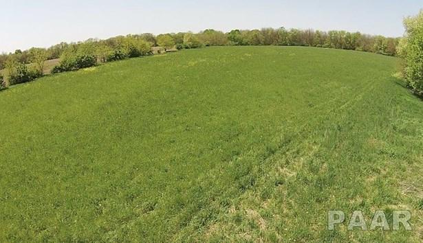 Acres - Edwards, IL (photo 5)