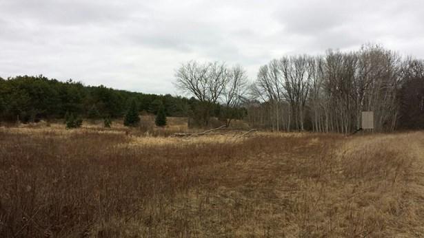 Rural - Endeavor, WI (photo 1)