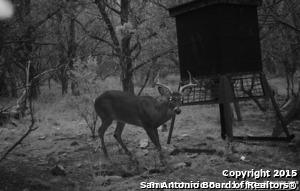 00 Rebecca Creek Rd, Spring Branch, TX - USA (photo 4)