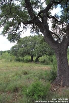 Silent Holw, San Antonio, TX - USA (photo 2)