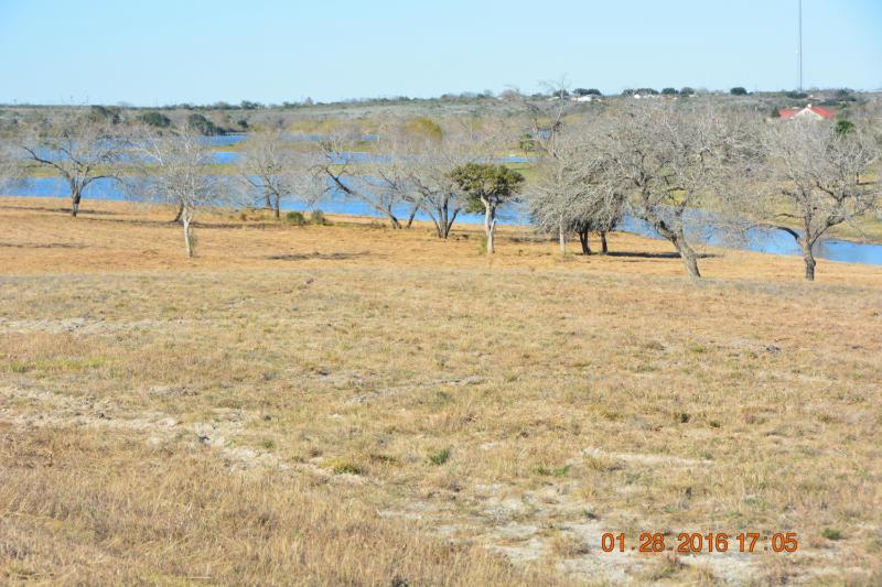 Cross Property - Sandia, TX (photo 5)
