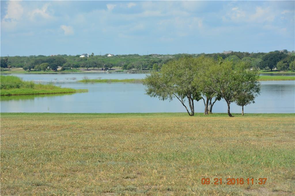 Cross Property - Sandia, TX (photo 4)