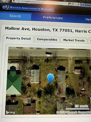0 Mallow, Houston, TX - USA (photo 2)