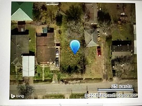 0 Phlox, Houston, TX - USA (photo 1)