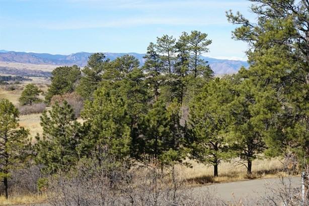 11 Elk Pointe Lane, Castle Rock, CO - USA (photo 4)