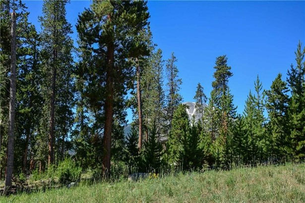 230 Easy Bend Trail, Silverthorne, CO - USA (photo 5)