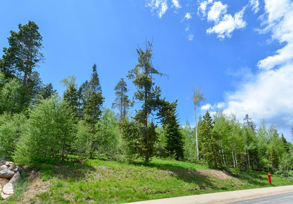 1575 Golden Eagle Road, Silverthorne, CO - USA (photo 1)