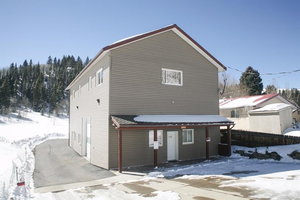 1081 Main Street, Minturn, CO - USA (photo 4)