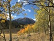 1430 Ruby Road, Silverthorne, CO - USA (photo 1)
