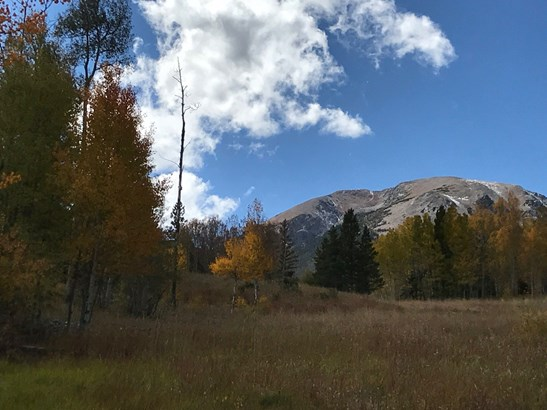 1430 Ruby Road, Silverthorne, CO - USA (photo 3)