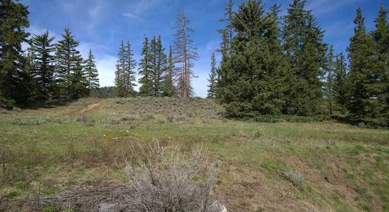 79 Canyon View Court, Dillon, CO - USA (photo 2)