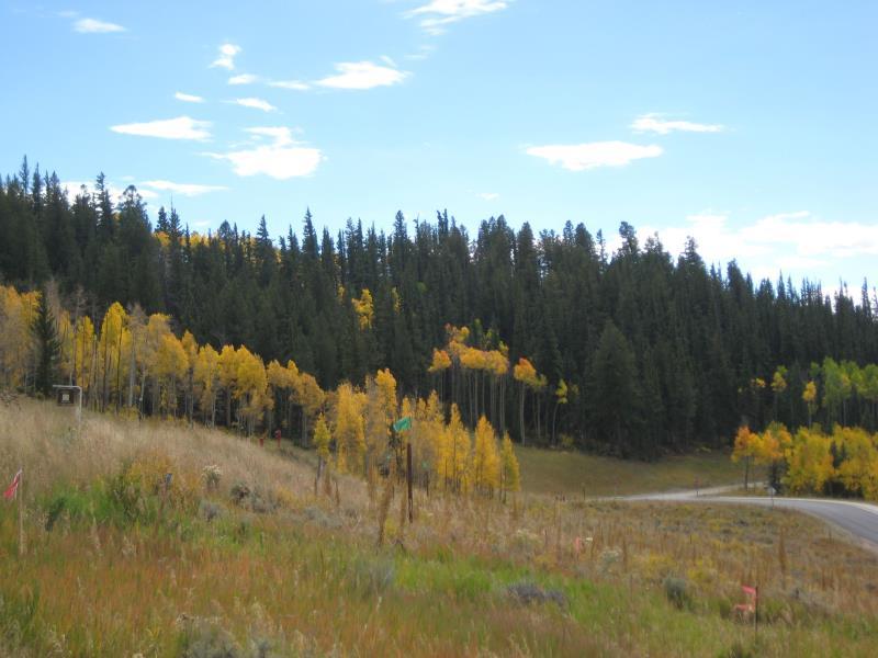59 Angler Mountain Ranch Road, Silverthorne, CO - USA (photo 2)