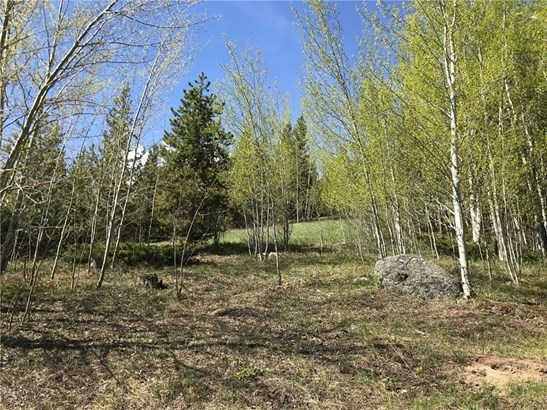 2300 Golden Eagle Road, Silverthorne, CO - USA (photo 2)