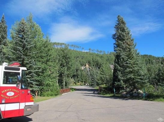 185 Elk Track Road, Beaver Creek, CO - USA (photo 4)