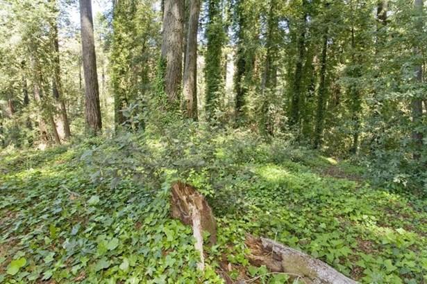 98 Conifer Way, Woodacre, CA - USA (photo 2)