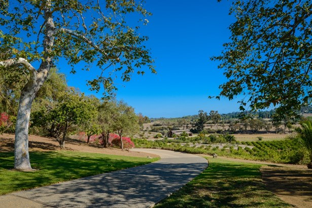 Contemporary, Detached - Rancho Santa Fe, CA (photo 4)