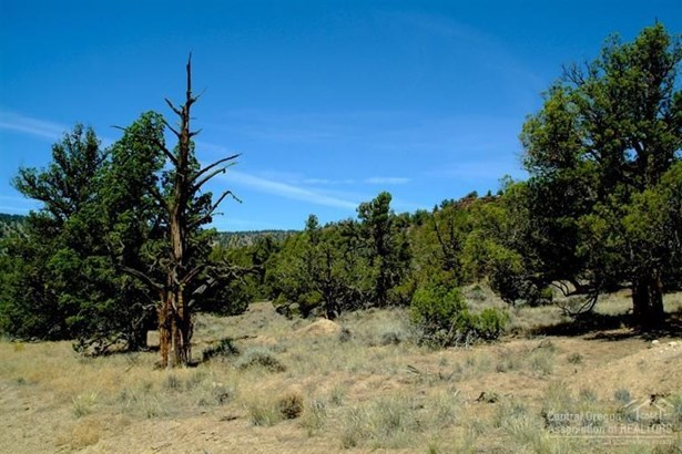 10558 Southeast Wicasa Lane, Prineville, OR - USA (photo 3)