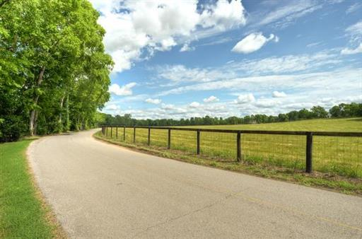 Farm, Traditional - Gallatin, TN (photo 2)