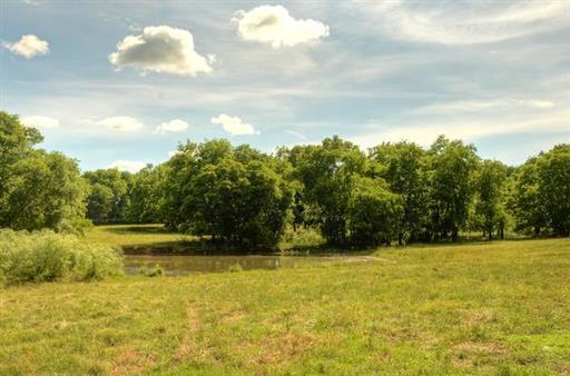 Farm, Traditional - Gallatin, TN (photo 3)