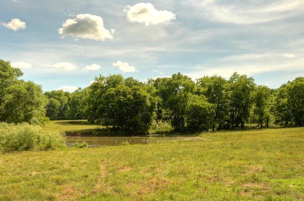 Site Built, Traditional - Gallatin, TN (photo 2)