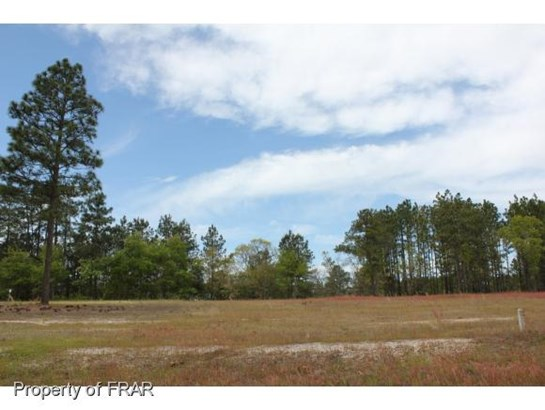 Residential Lot - AUTRYVILLE, NC (photo 1)