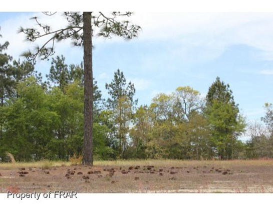 Residential Lot - AUTRYVILLE, NC (photo 3)