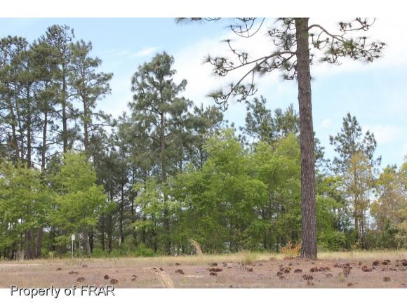 Residential Lot - AUTRYVILLE, NC (photo 4)