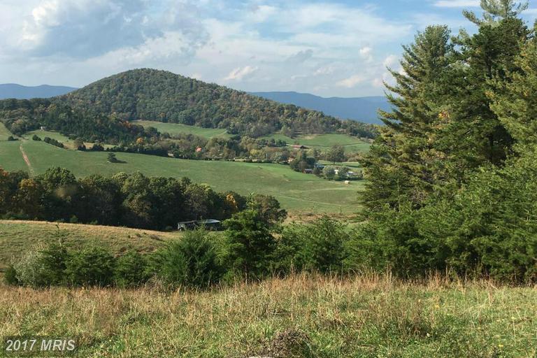 Lot-Land - BENTONVILLE, VA (photo 4)