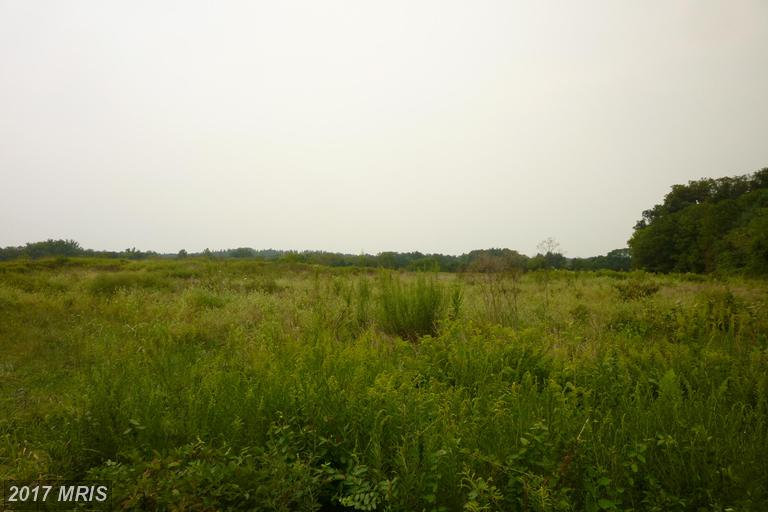 Lot-Land - CATLETT, VA (photo 4)