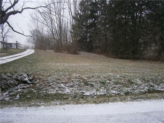 Hartzell, North Benton, OH - USA (photo 3)