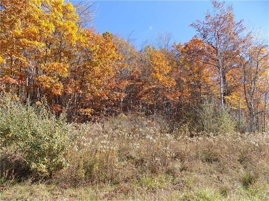 470 Mutton Hollow Road, Rural Valley, PA - USA (photo 1)