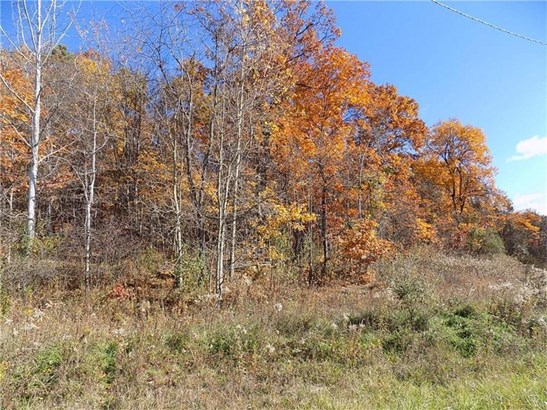 470 Mutton Hollow Road, Rural Valley, PA - USA (photo 2)