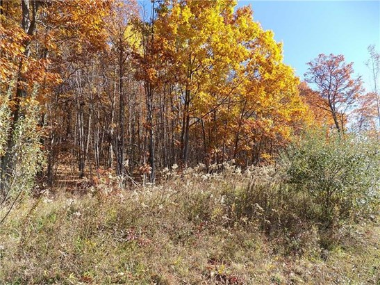470 Mutton Hollow Road, Rural Valley, PA - USA (photo 3)