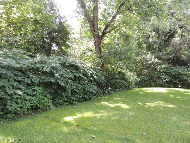 535 Ravine View, Akron, OH - USA (photo 3)