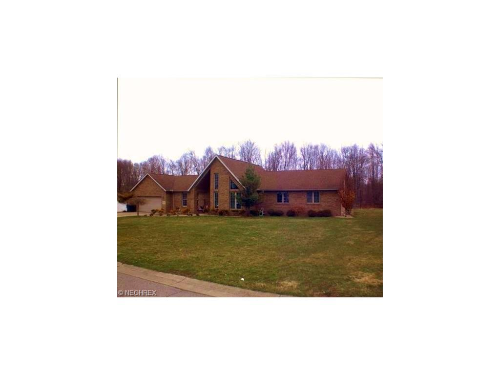 2369 Bianca Ln, Cortland, OH - USA (photo 1)