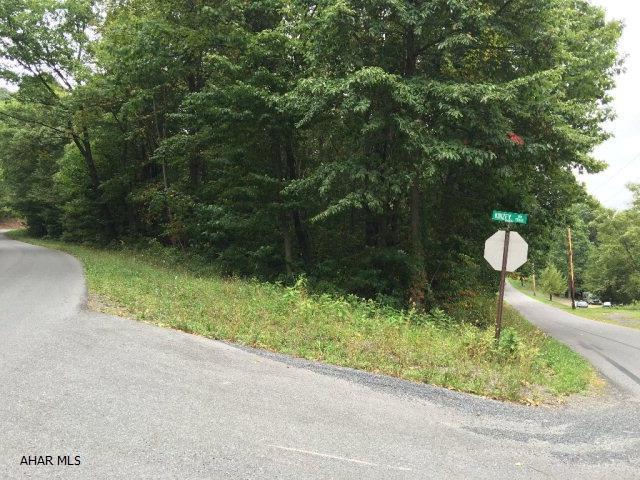 794 Mountain View Drive, Schellsburg, PA - USA (photo 5)