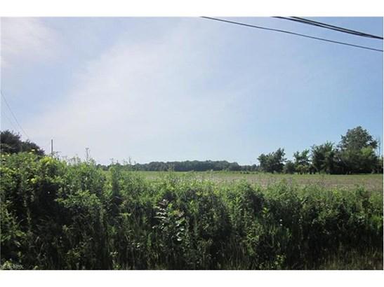 State Rd 60, Wakeman, OH - USA (photo 1)
