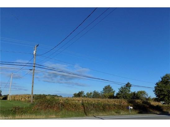 State Rd 60, Wakeman, OH - USA (photo 5)