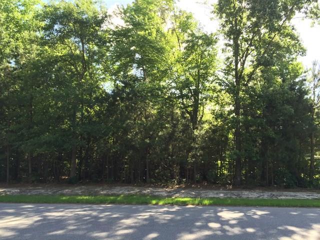 Tbd See View Lane, Hertford, NC - USA (photo 1)