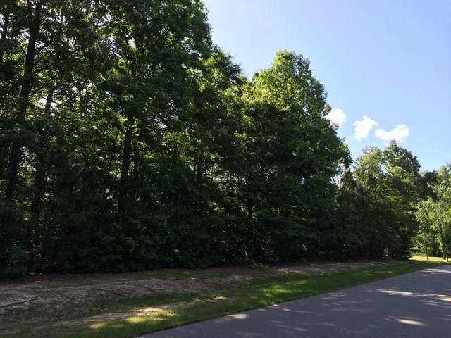 Tbd See View Lane, Hertford, NC - USA (photo 3)