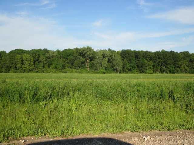 0 N County Line, Deerfield, MI - USA (photo 3)