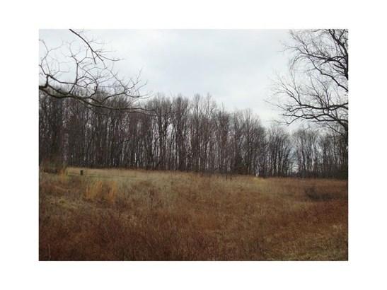 Corner Of Six Flats & Tearing Run Road, Graceton, PA - USA (photo 2)