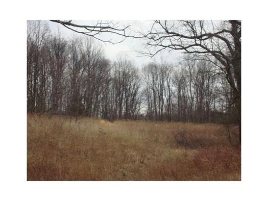 Corner Of Six Flats & Tearing Run Road, Graceton, PA - USA (photo 4)