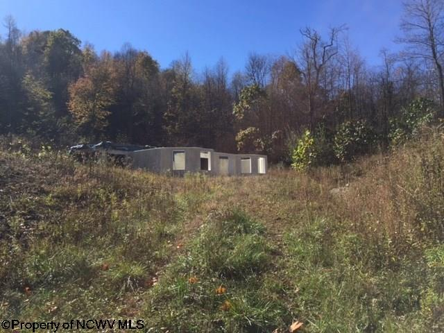 1123 Cuzzart Road, Bruceton Mills, WV - USA (photo 1)