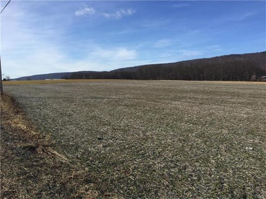 Lot 3b Mountain Road, Germansville, PA - USA (photo 3)