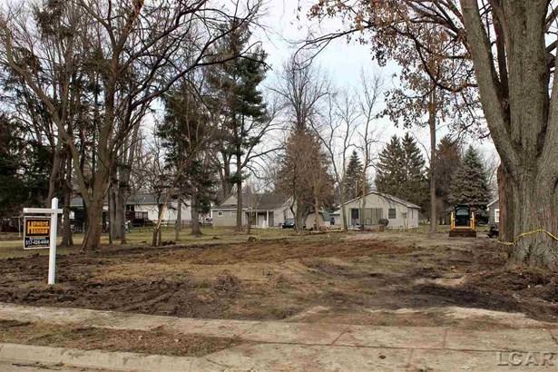 223 Railroad Street, Blissfield, MI - USA (photo 1)